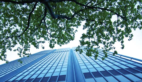 Building and trees seen from below