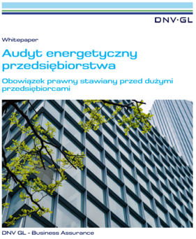Audyt energetyczny DNV GL